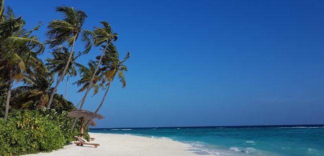 Fabian Thalmann auf den Malediven VIP Studienreise