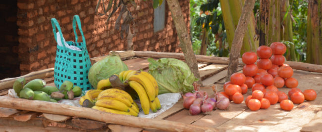 Uganda Studienreise